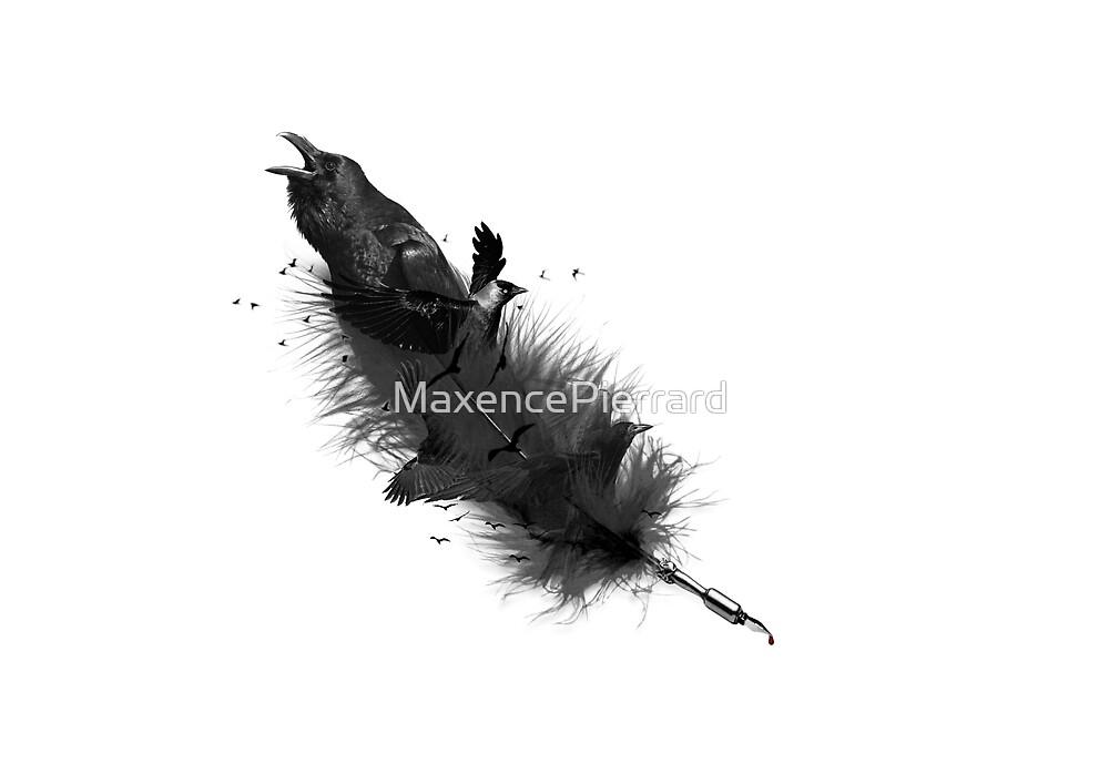 Raven - Feather by MaxencePierrard