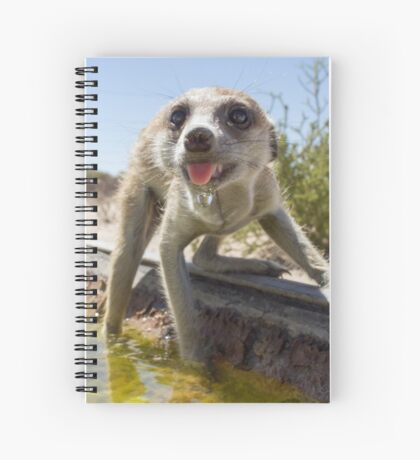 A meerkat drinks Spiral Notebook