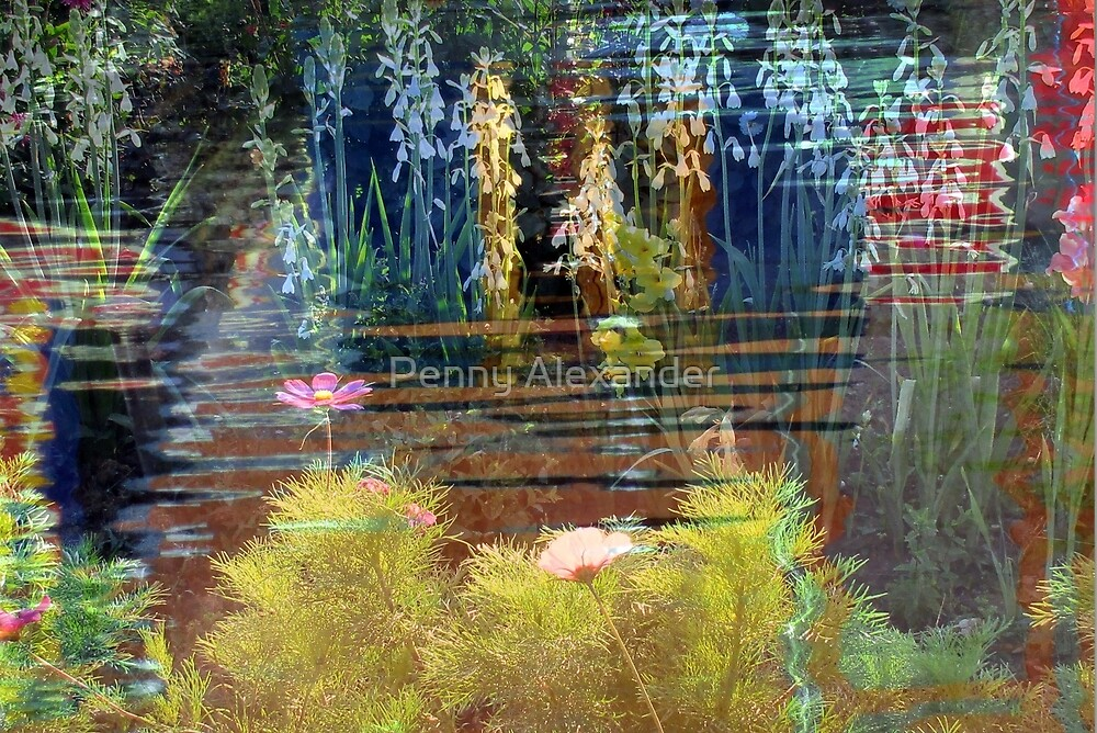 Water Garden by Penny Alexander