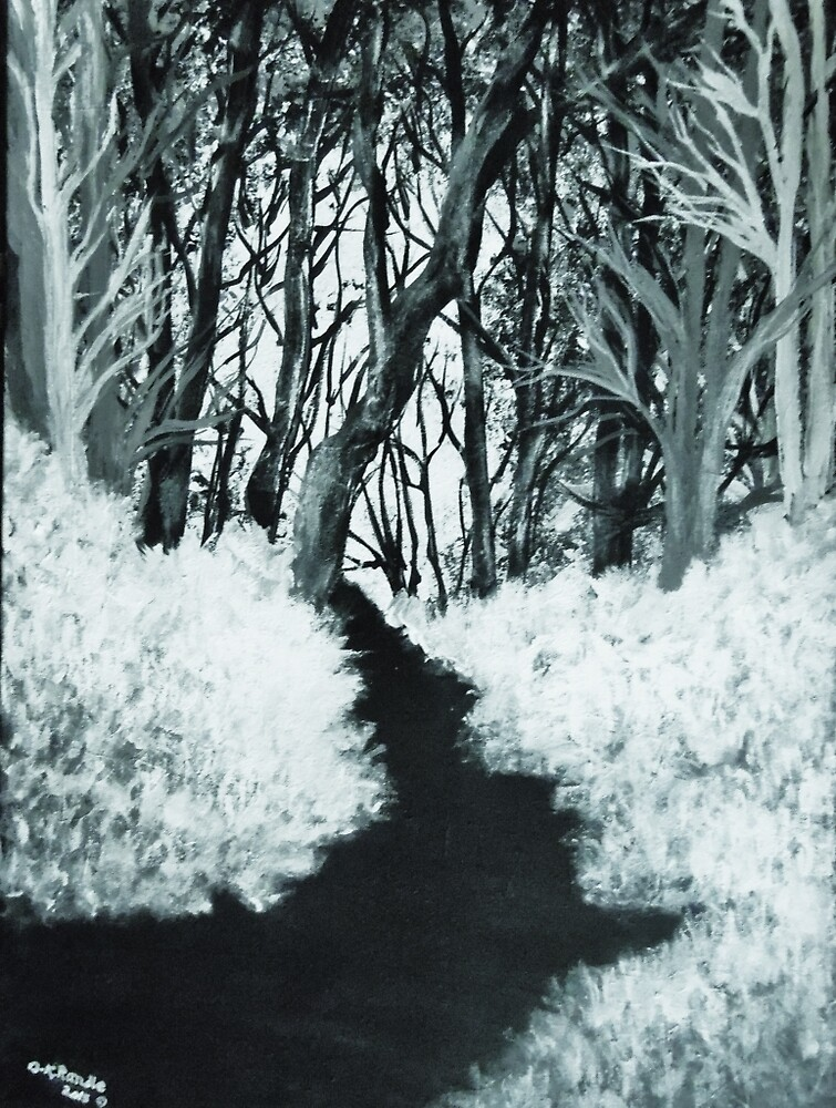 A Walk In The Woods by Dawn Randle