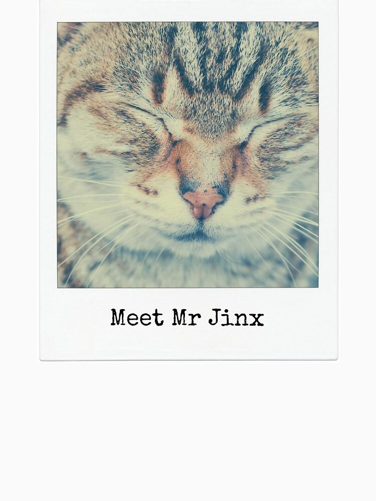 Meet Mr Jinx by NIPPONGA