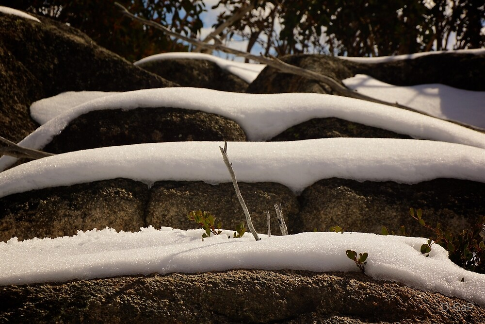 Snow Layers  by D-GaP
