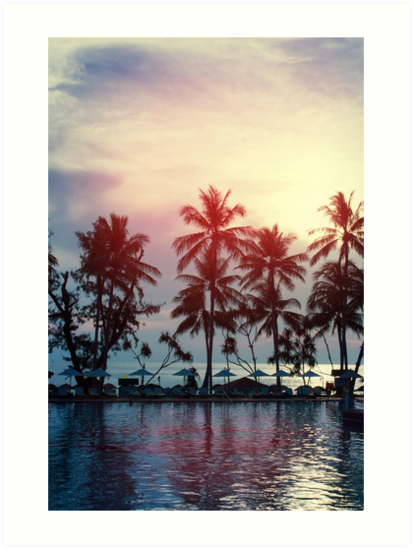 Sunset at a coastline with palm trees by dariazu