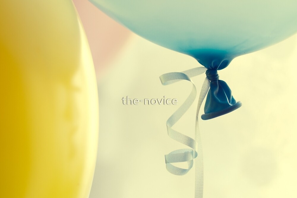 Party  by the-novice