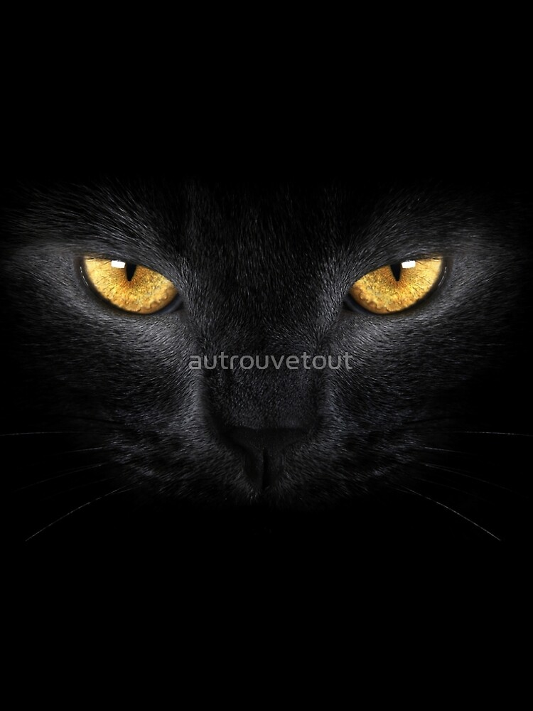 black cat head by autrouvetout