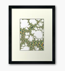 Coloured Winkles Framed Print