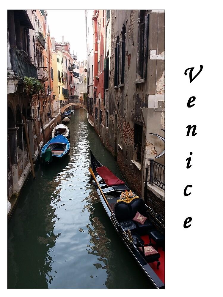 Venice life by LeanBean65