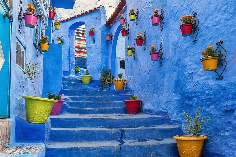Blue stairs and walls decorated with colourful flowerpots. by cloud7