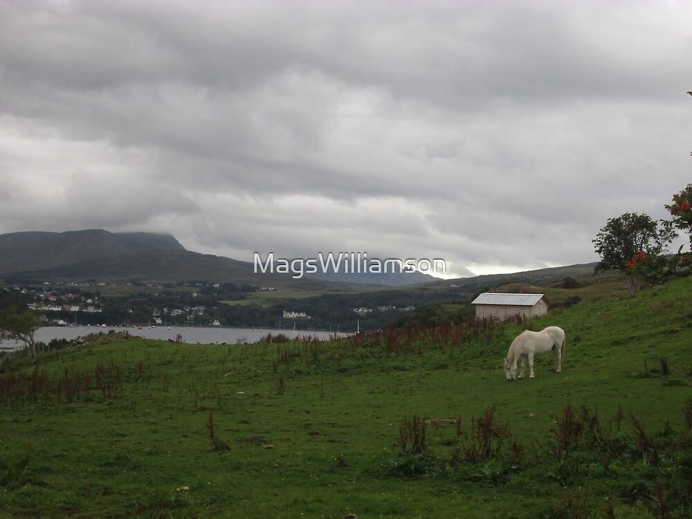 Portree Bay & Wild Horses, Skye, Scotland by MagsWilliamson