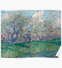 Vincent Van Gogh - Orchard In Blossom, 1888 01 Poster