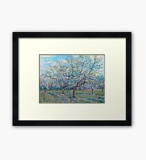 Vincent Van Gogh - Orchard With Blossoming Plum Trees, 1888 Framed Print