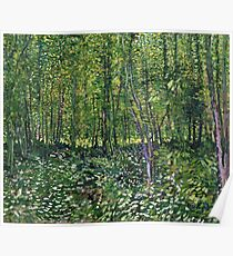 Vincent Van Gogh - Trees And Undergrowth, July 1887 - 1887  Poster
