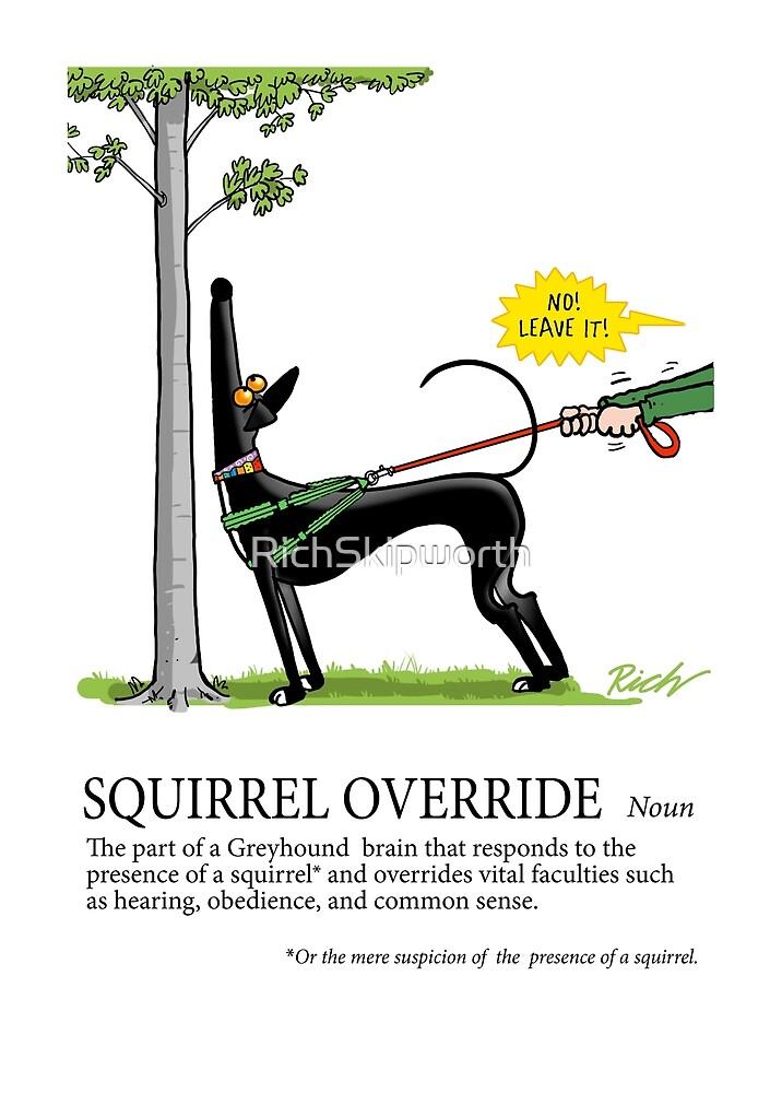 Greyhound Glossary: Squirrel Override by RichSkipworth