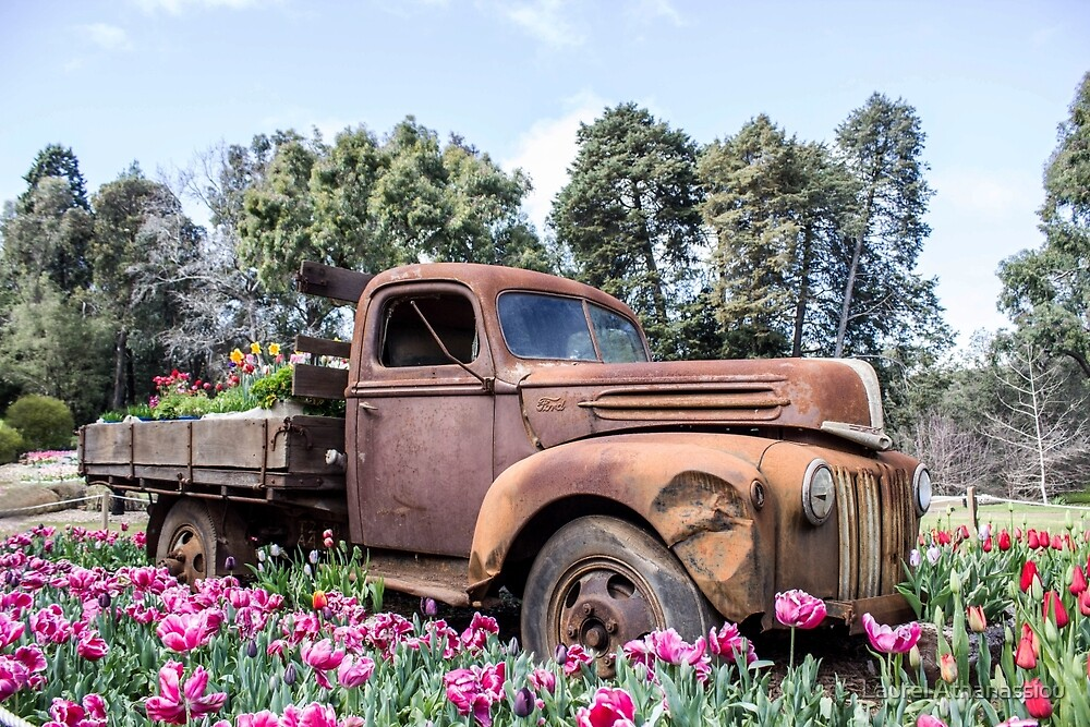 Flower Truck by Laurel Athanassiou