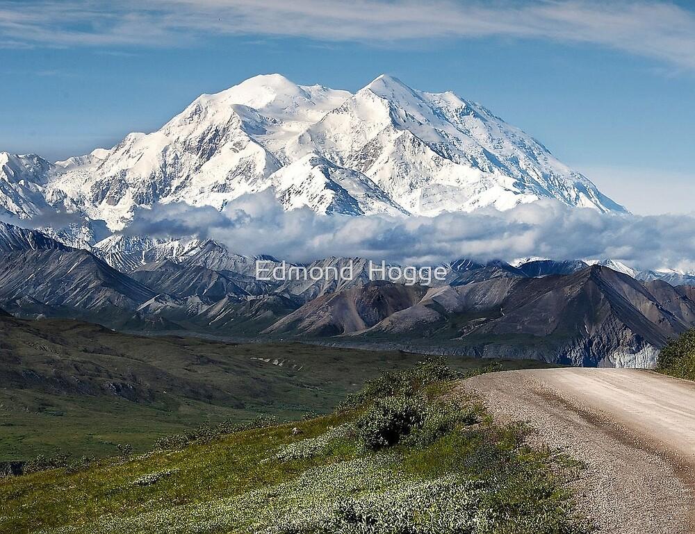 Denali National Park by Edmond  Hogge