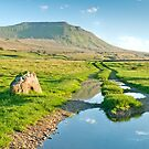 Reflective Ingleborough by Stephen Knowles