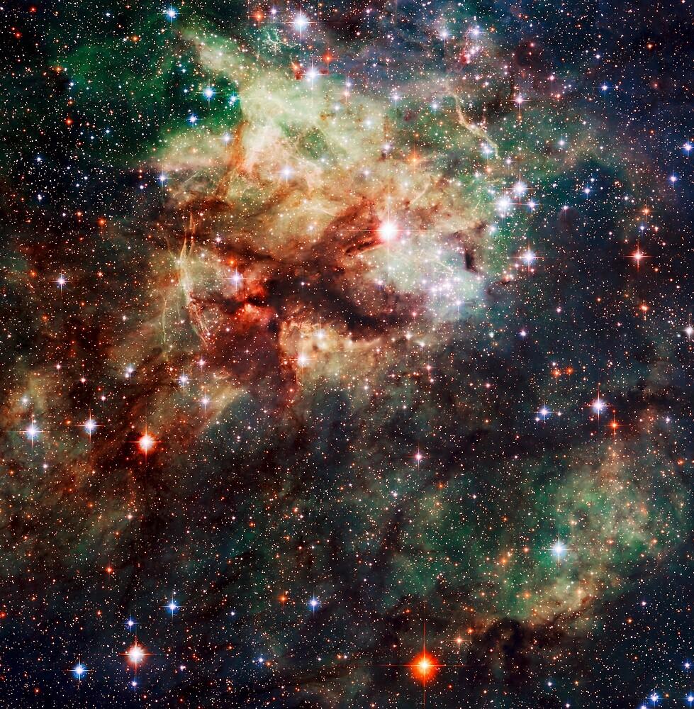 The Tarantula Nebula by CosmicStyles