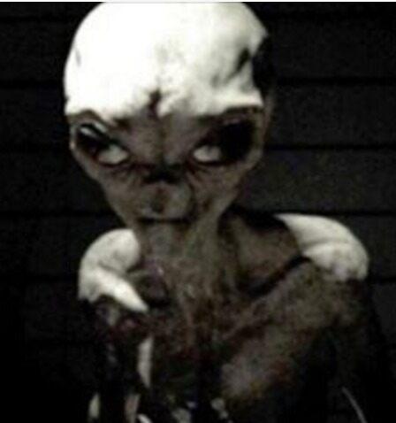 Alien Hyper Evolution by Benjachary Grimjolly