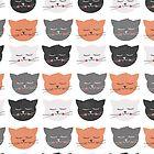 Cat Madness by KarinBijlsma