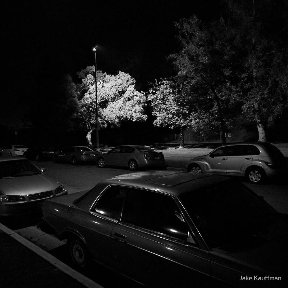 Hollywood Park At Night by Jake Kauffman