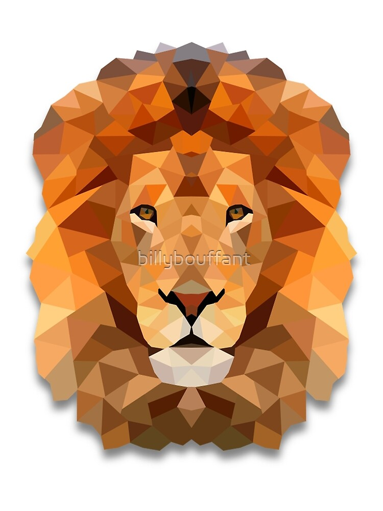Lion by billybouffant