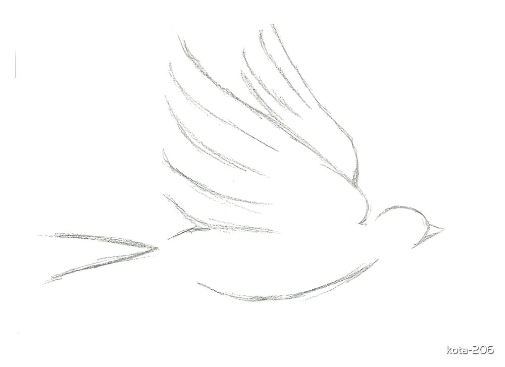 Little Bird Sketch by kota-206