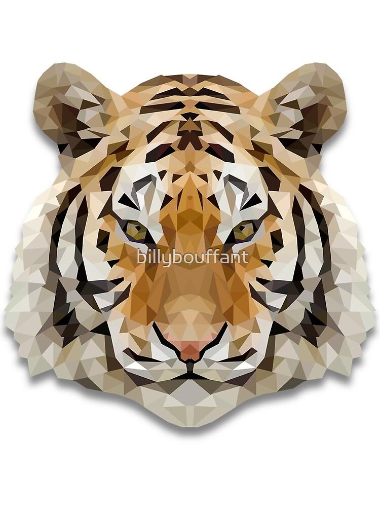 Tiger by billybouffant