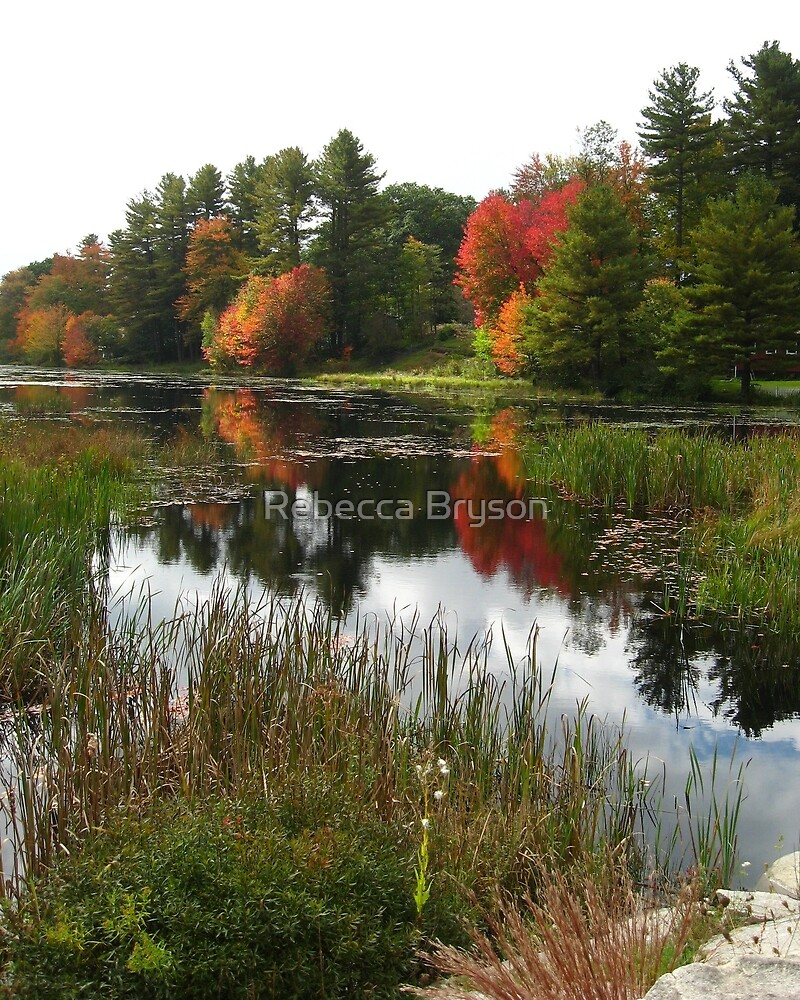 Autumn in Templeton  by Rebecca Bryson