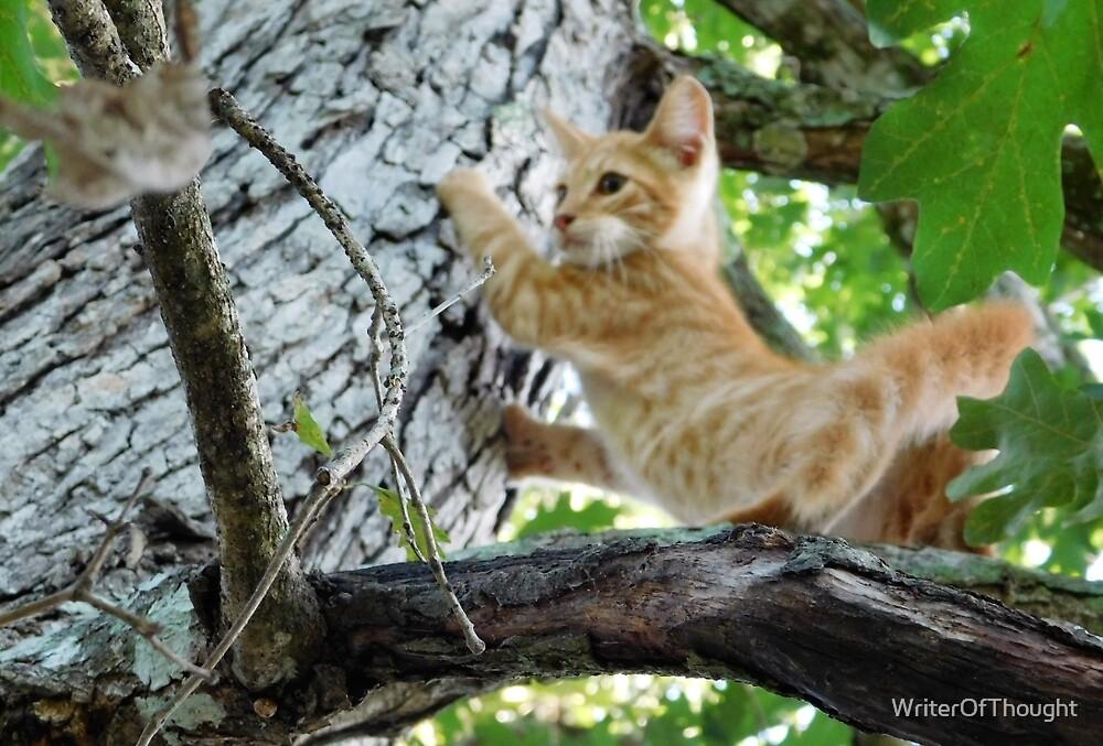 Kitten in a Tree by WriterOfThought