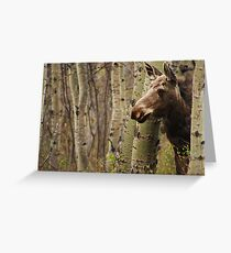 Elliott the Curious Moose Greeting Card