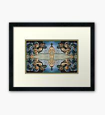 Birth Framed Print