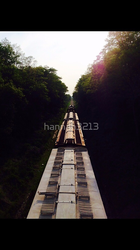 Train in the Woods by hannah3213