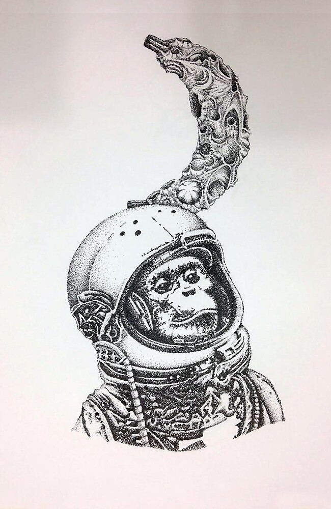 Space Monkey by Tarso Galvão