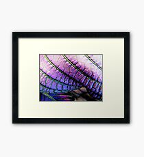 Theatrical Framed Print