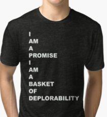BASKET OF DEPLORABILITY 1 Tri-blend T-Shirt