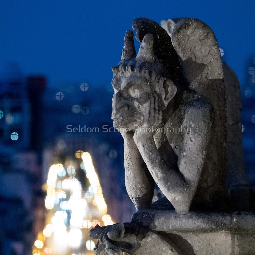 Stony Contemplation by Seldom Scene Photography