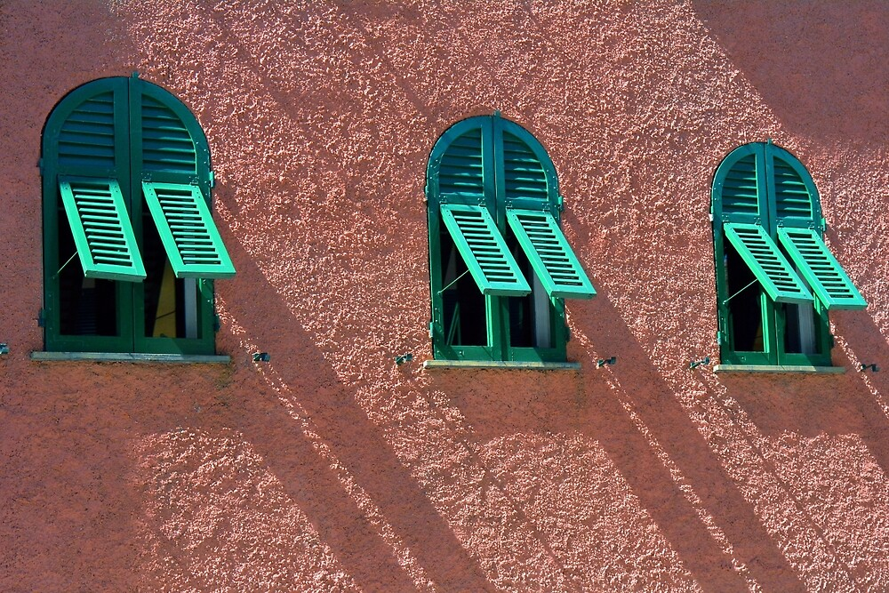 Windows with green shutters on a red wall by oanaunciuleanu