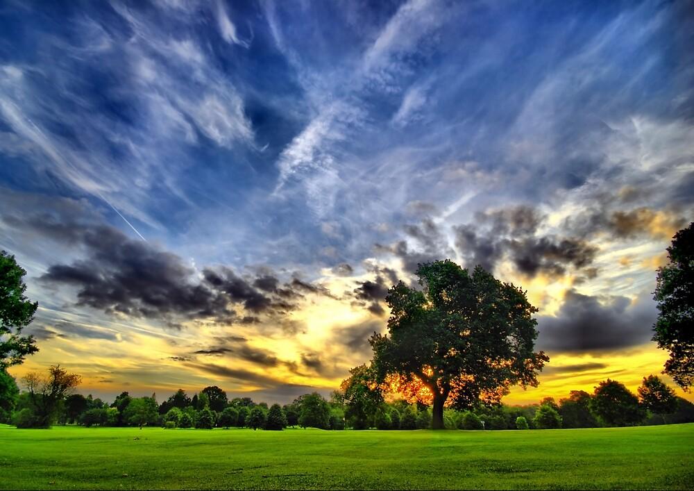 Green Paradise by johnsonkarlena