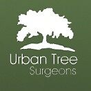 Offering Arborists in North Shore at Low  Price  by Rickeyromano23
