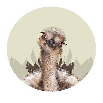 Savanna Ostrich by patriciasanjuan