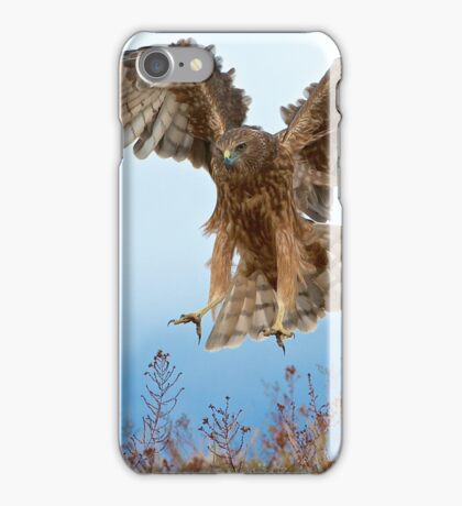 Wild NZ Kahu Hawk attack iPhone Case/Skin