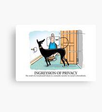 Greyhound Glossary: Ingreysion of Privacy Canvas Print