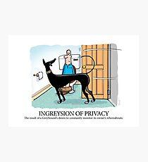 Greyhound Glossary: Ingreysion of Privacy Photographic Print