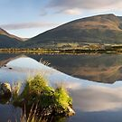 Reflections of Blencathra and Skiddaw from Tewet Tarn  by Martin Lawrence