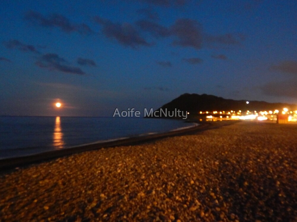 Bray by light of the moon by Aoife McNulty