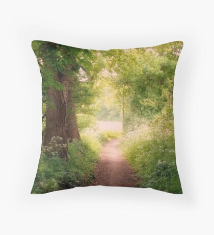 Follow my dreams!! Path to Fairyland!  Throw Pillow