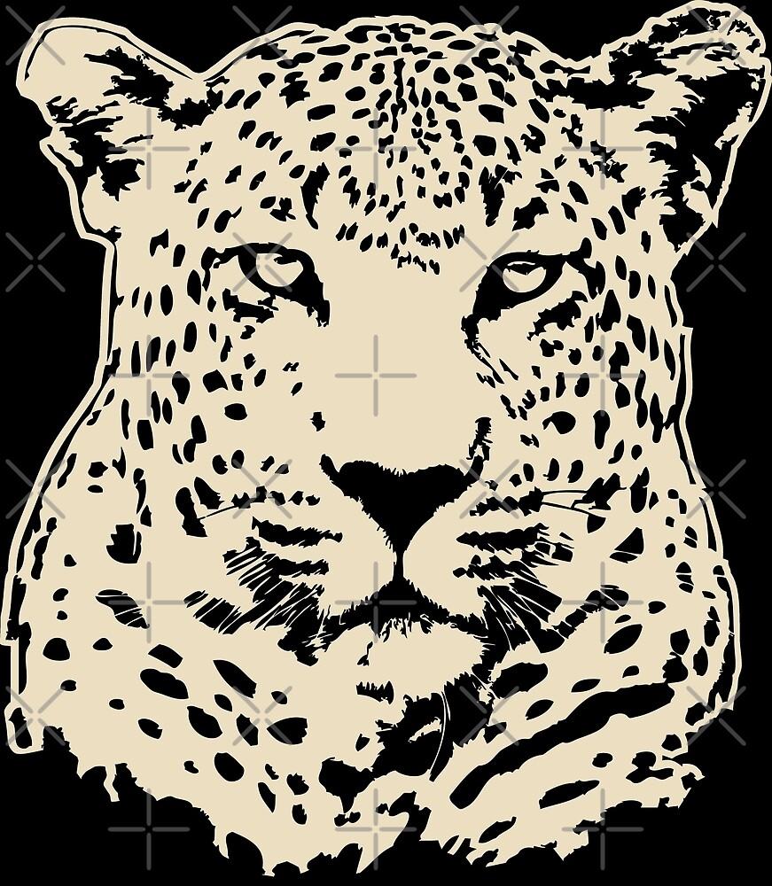 Leopard Wildlife Safari by Port-Stevens