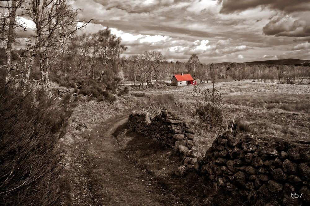 The bothy, Loch Kinord by tj57