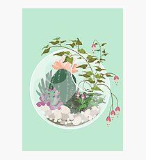 Round Terrarium Photographic Print