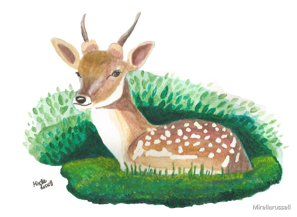 Deer by Mirellarussell